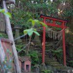 【撮影旅行】島×神社という最高の組み合わせに癒される – 吉谷神社@伊豆大島